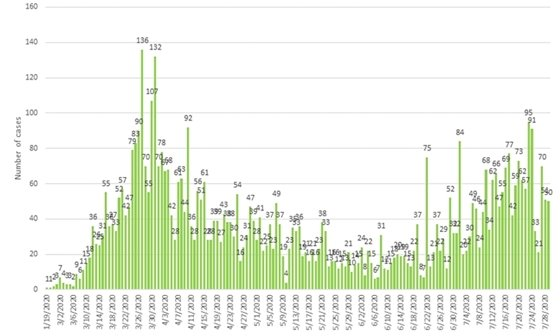 New COVID-19 cases by date graph for Snohomish County