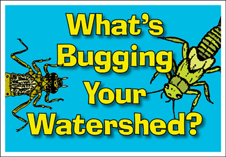 What&#39s Bugging Your Watershed