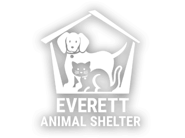 Animal Shelter Homepage