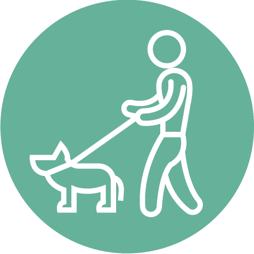 Do walk your pets on a leash